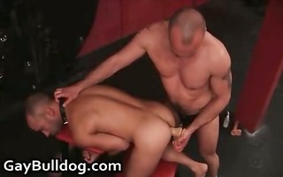 very bizarre homosexual arse fucking and dong